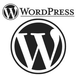 WordPress hosting is specifically beneficial for those who use the WordPress platform