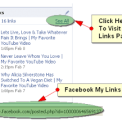 How To Add Facebook Status Updates in Blogger Blogs 9