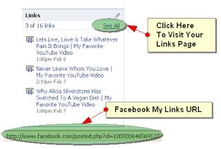 How To Add Facebook Status Updates in Blogger Blogs 3