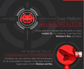 Cross-Platform Malware - The Infamous Koobface
