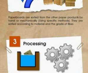 Infographic to Better Understand the Recycling Process of Paperboard 1