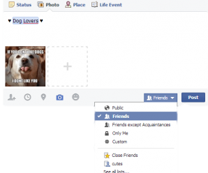 How to Make Facebook Photos to Be Seen By Just Friends 2