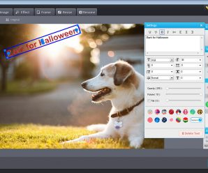 Photo Watermark Software Text Effects
