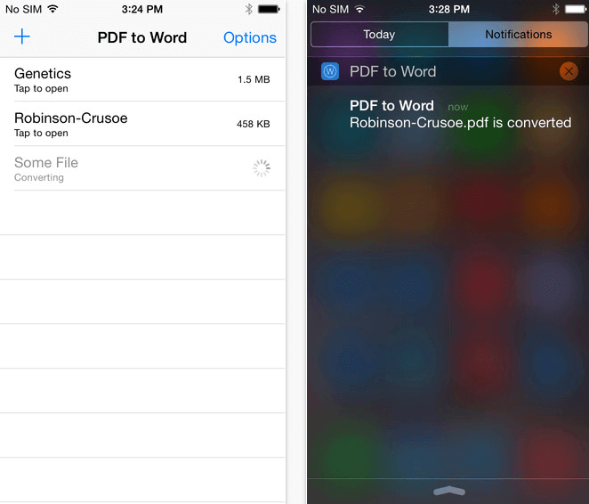 Convert PDF to Word on iPhone Screenshot