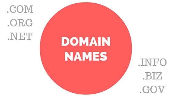 Domain Names - .COM .ORG .NET .INFO .BIZ .GOV