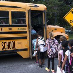 School Students Get on School Bus - Back to School