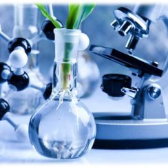 Biochemical Engineering Assignment Help. Biochemical Assignment Help