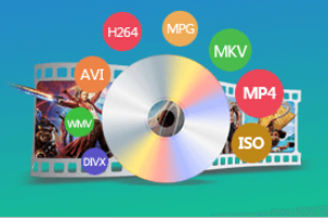 DVD Ripper - Rip any DVD to Digital
