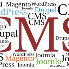 Use of CMS (WordPress, Drupal, Magento, Joomla) in Web Designing