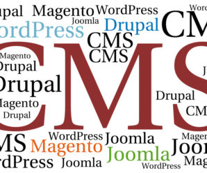 Use of CMS (WordPress, Drupal, Magento, Joomla) in Web Designing