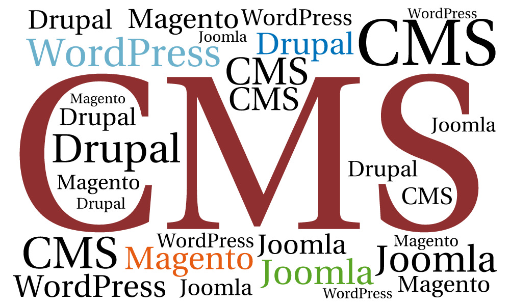 Use of CMS (WordPress, Magento, Drupal, Joomla) as an Adobe Business Catalyst alternative for Web Design