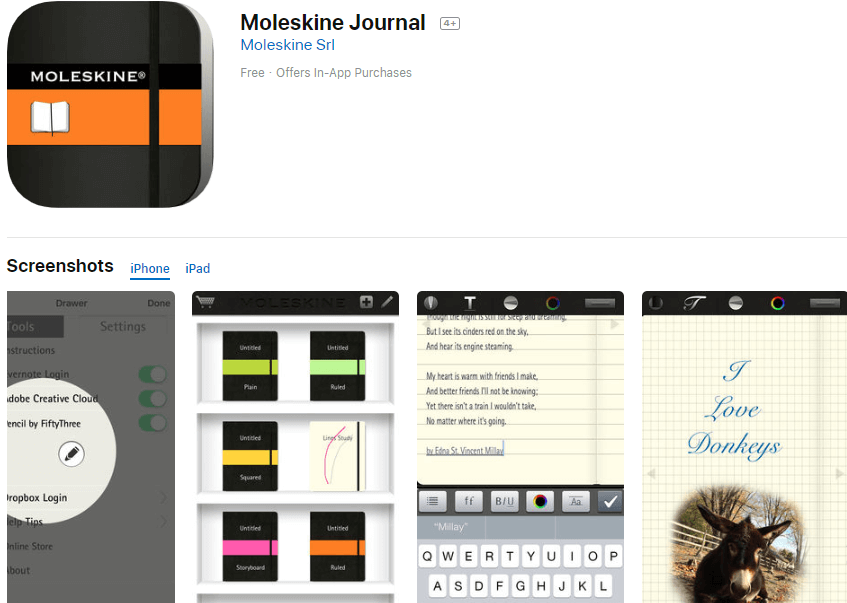 Moleskine Journal - Your best ideas everywhere