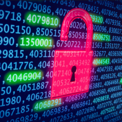 How Can You Properly Manage Data Breaches? 1