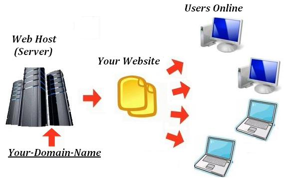 Web Host or Web Server stores website pages and files