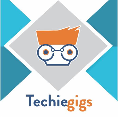 TechieGigs
