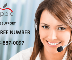 Tips for Choosing a Toll Free Number Provider 1