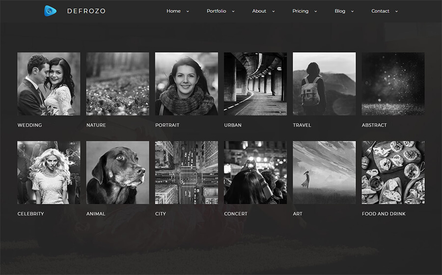 Defrozo Photographer Portfolio Website Template