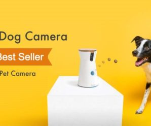 Furbo Dog Camera #1 Best Seller In Pet Camera