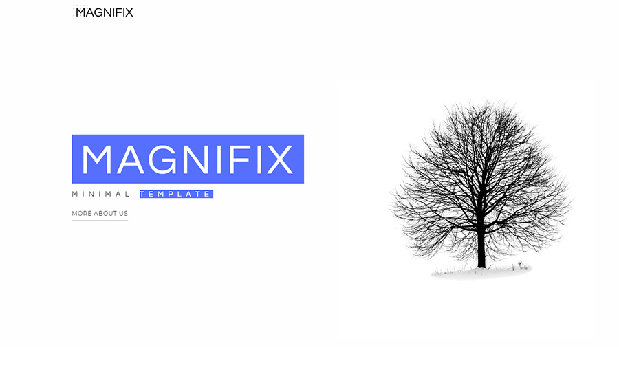 Magnifix - Creative Minimal Elementor WordPress Theme.