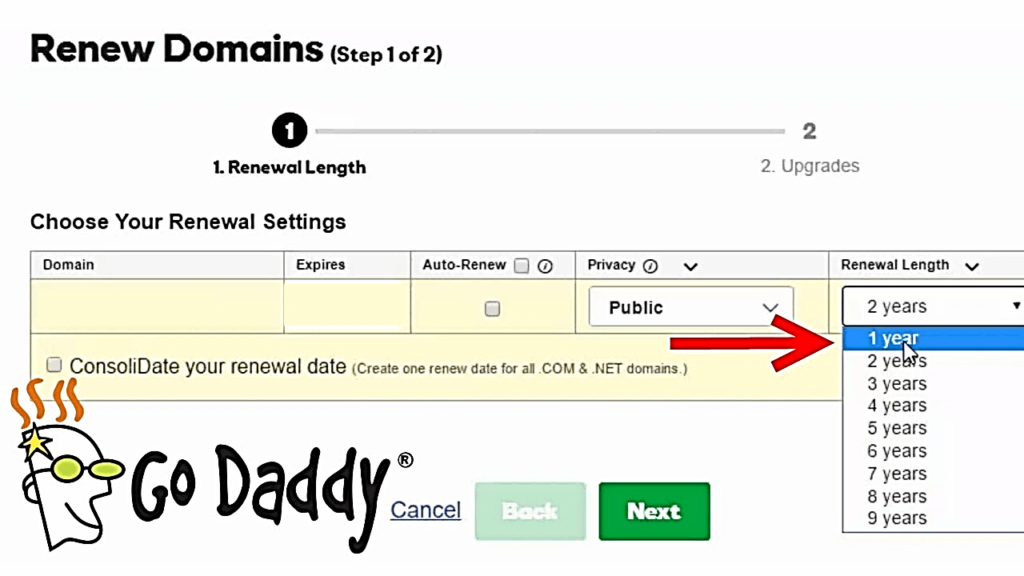 GoDaddy Renew Domains