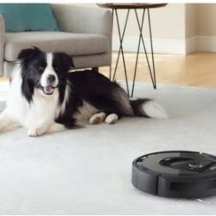 Roomba 980 Robot Vacuum Cleaner and Border Collie. Best Robot Vacuum 2019, Best Robot Vacuum for Carpet, Best Robot Vacuum for Pet Hair.