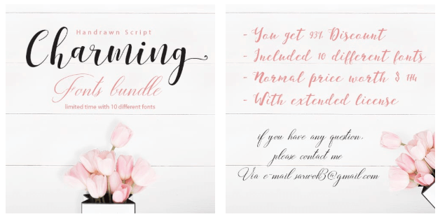 Hand Drawn Font Script Charming Fonts Bundle.