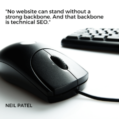 No website can stand without a strong backbone. And that backbone is technical SEO. – Neil Patel