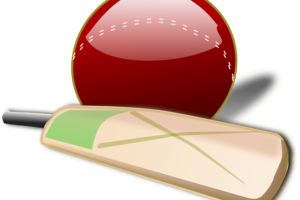 Cricket Ball and Bat