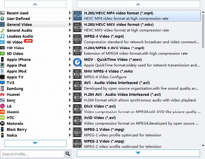 VideoSolo BD-DVD Ripper Output Formats.