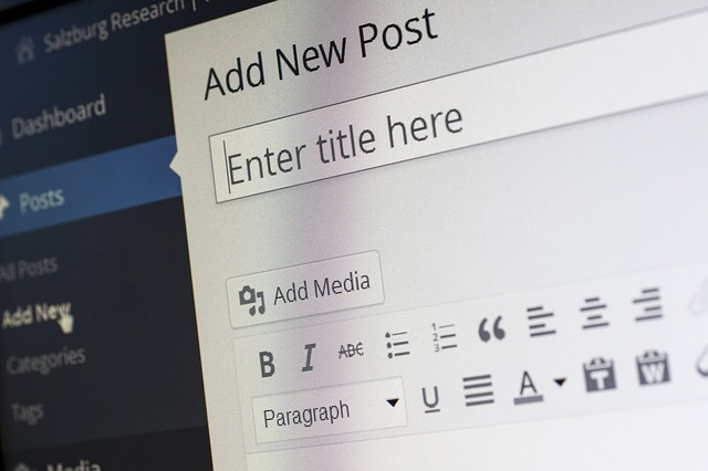WordPress, CMS, Blogging, Blogger, Add New Blog Post, Post Editor, Blog, Write, Publish.