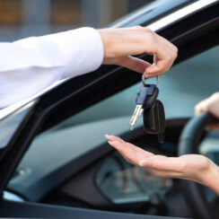 Streamline Your Business with Car Rental Booking Software.