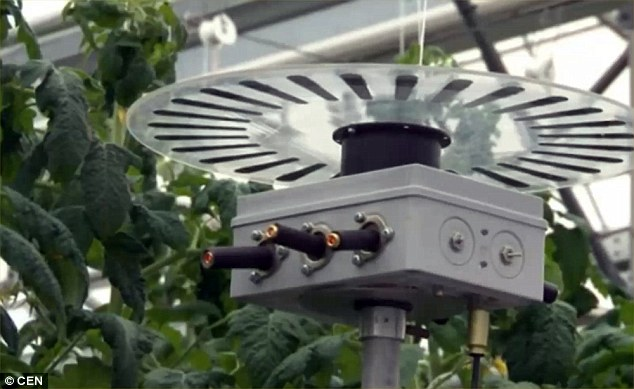 Laser projectors in a greenhouse blasting plants with laser light, helping them to boost their growth and kill diseases.