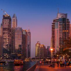 Dubai UAE Startup Business