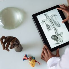 Healthcare Technology, African American scientist studying anatomy with tablet