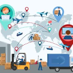 Logistics Management, Inventory Management, Transportation Management