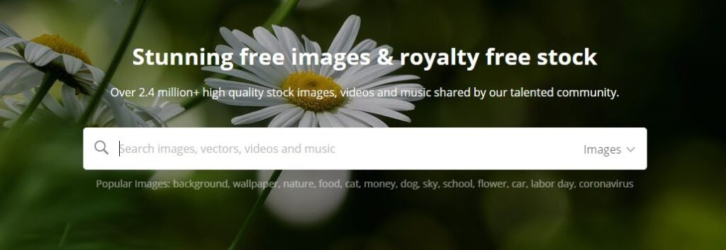 Pixabay: Stunning free images and royalty free stock photos